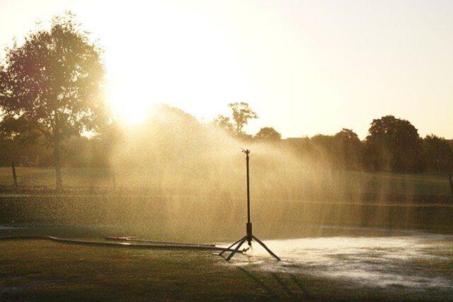 Jaki system nawadniania ogrodu warto wybrać?